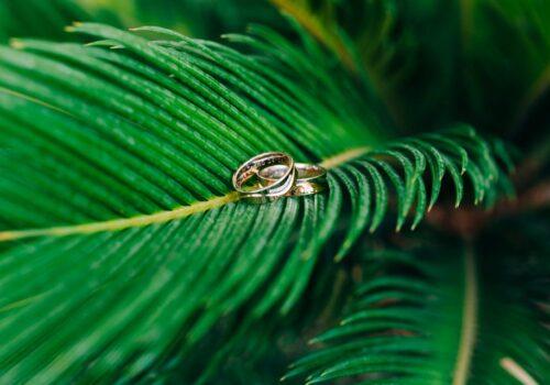 Kostaryka ślub cywilny egzotyczna roślinność