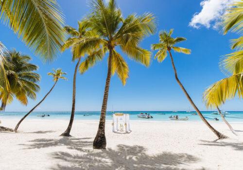 Ślub-na-Dominikanie